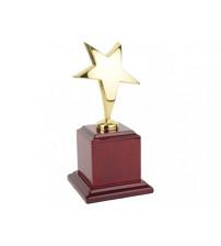 Награда «Звезда» на постаменте
