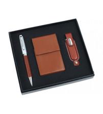 Набор: шариковая ручка, визитница, флеш-карта USB 2.0 на 1 Gb
